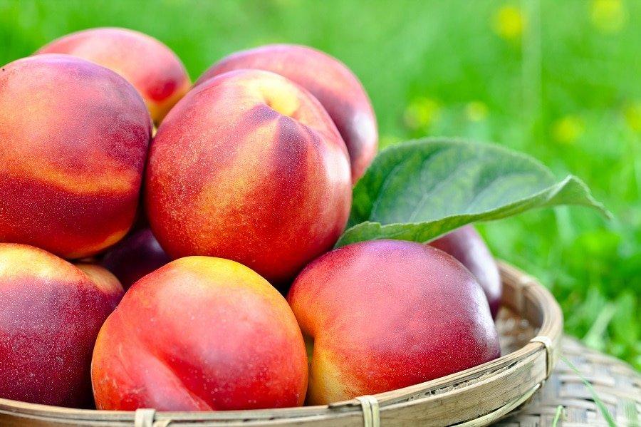 beneficiile pentru sanatate ale nectarinelor